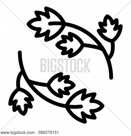 Parsley Herb Icon. Outline Parsley Herb Vector Icon For Web Design Isolated On White Background