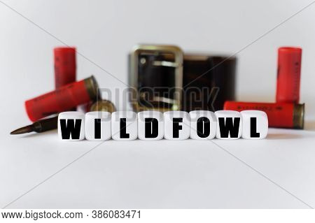 Military And Hunting Concept. Against The Background Of Cartridges And A Military Belt, Cubes With T