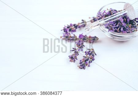 Dropper With Lavender Essential Oil And Lavender Flowers Around It On White Background With Copyspac