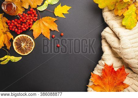 Autumn Background: Pumpkins And Fallen Leaves On Black Background. Top View And Copy Space. Hallowee