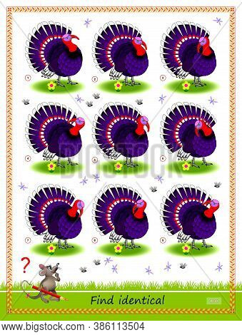 Logic Puzzle Game For Children And Adults. Find Two Identical Turkeys. Printable Page For Kids Brain