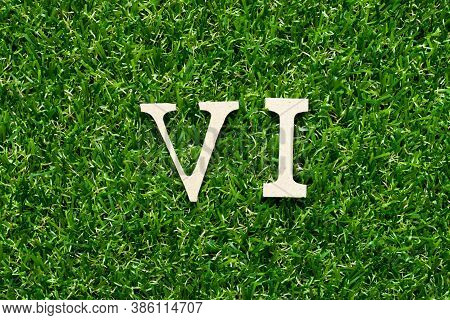 Wood Alphabet Letter In Word  Vi (abbreviation For Value Investor) On Green Grass Background