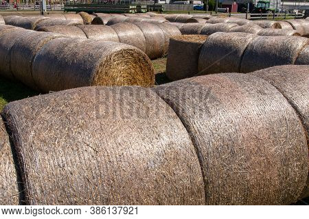 Bales Roll Hay Roll Bales On Countryside