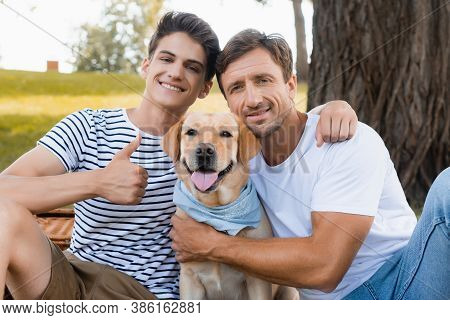 Teenager Son Showing Thumb Up And Hugging Father Near Golden Retriever