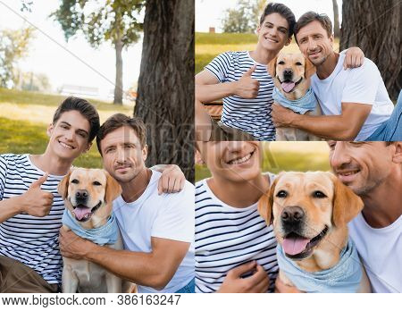 Collage Of Teenager Son Showing Thumb Up Near Father And Golden Retriever
