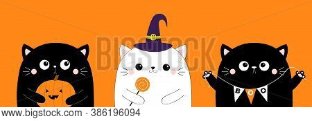 Happy Halloween. Cat Set Holding Pumpkin, Sweet Candy. Hanging Spider Insect. Witch Hat Cap. Boo. Cu