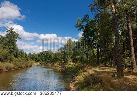 Forest River Landscape. River Forest View. Forest River Summer Scene. Forest River Water