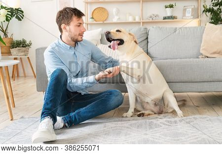 Man With A Pet Dog Friend Sitting On Floor In Living Room. Happy Guy Teaching Cute Puppy Giving Paw