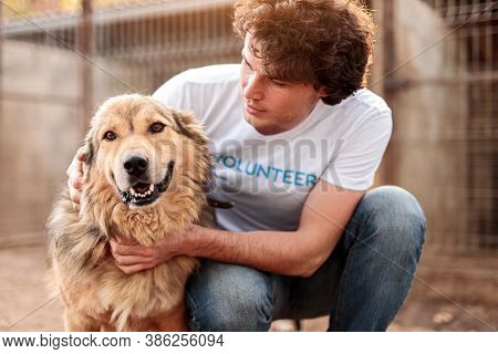 Responsible Attentive Young Male Volunteer Caring Adorable Hairy Dog While Working In Animal Shelter