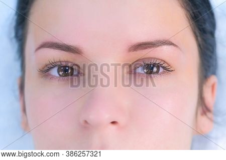 Eye Of Young Woman After Lash Laminating And Painting Eyebrows Procedures. Closeup Portrait Of Girl
