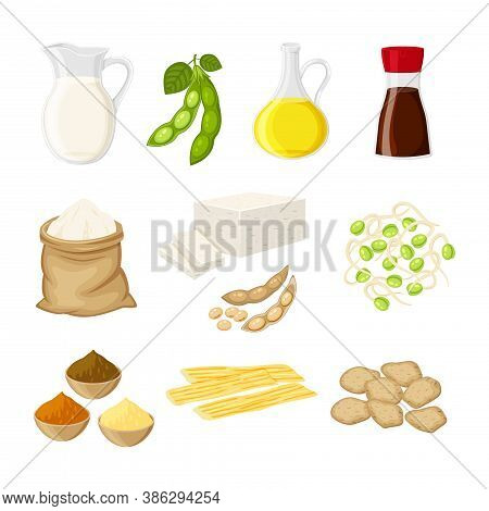 Set Of Different Soy Product In A Flat Cartoon Style Milk, Oil, Soy Sauce, Flour, Tofu, Miso, Meat,