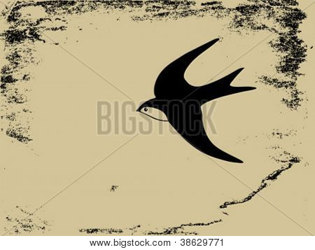 swallow silhouette on  grunge background, vector illustration