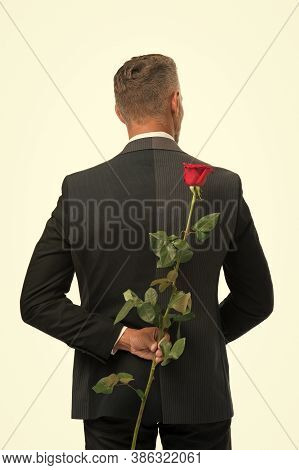 Surprise. Happy Valentines Day. Male Formal Fashion. Handsome Man Hide Rose Behind Back. Prepare Sur