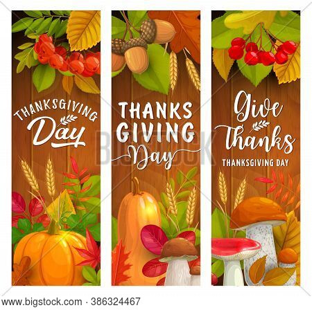 Thanksgiving Day Vector Banners Of Autumn Harvest Holiday. Fallen Leaves, Pumpkin Vegetables And Mus