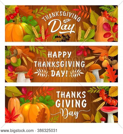 Thanksgiving Day Autumn Harvest Holiday Vector Banners. Fallen Leaves, Mushrooms, Acorns And Pumpkin