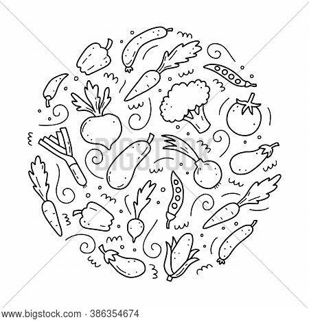 Hand Drawn Set Of Vegetable Elements, Carrot, Salad, Tomato, Onion, Lettuce, Chili. Comic Doodle Ske