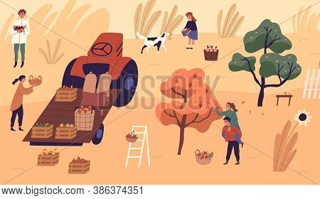 Family Of Farmers Picking Seasonal Fruits At Garden Vector Flat Illustration. Man, Woman And Child C