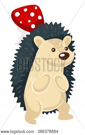 Hedgehog With Spikes And Mushroom, Woodland Animal Vector