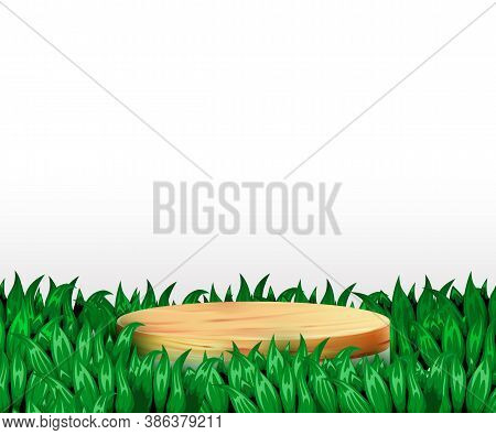 Abstract Scene Background. Cylinder Wood Podium On White Background With Grass. Product Presentation