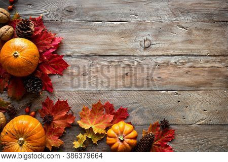 Autumn Composition - Pumpkins, Autumn Maple Leaves, Pine Cones  On Wooden Background, Creative Flat