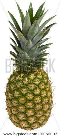Pineapple-Clipping Path