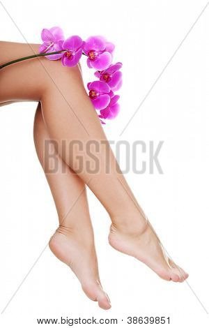 Beautiful female legs and an orchid flower, isolated on white