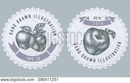 Monochrome Labels Design With Illustration Of Apples Stock Illustration