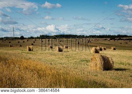 Nature Background. Bales Of Hay In An Agricultural Field. Wheat Field After Harvest In Russia. Agric
