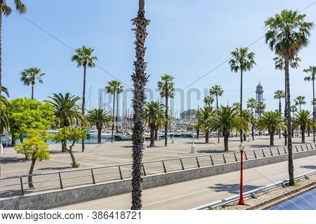 Barcelona Sea Promenade With Palm Trees, Spain