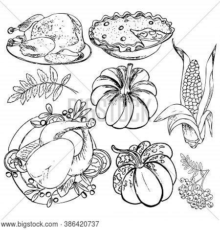 Thanksgiving Set. Turkey, Pumpkin, Pie, Corn, Autumn Leaf, Rowanberry, Roast Turkey. Happy Thanks Gi