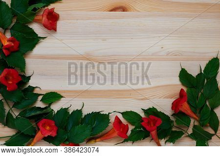 Floral Autumn Flatlay On Wooden Background With Green Leaves, Orange Flowers. Top View, Copy Space,
