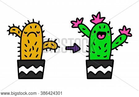 Cactus Before And After Taking Care Support Hand Drawn Vector Illustration In Cartoon Doodle Style