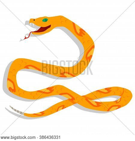 Yellow Snake Cartoon Character. Vector Illustration Isolated On White Background. Dangerous And Toxi