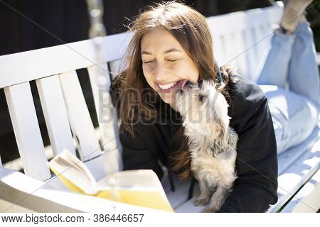 The Dog Licks The Face Of A Beautyfull Girl Who Broadly Smiles. She Reading Book Lying On Garden Ben