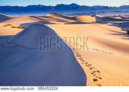 USA. Easily accessible dunes are located along Road 190. Magical desert morning. Various traces are visible along the crest of the dune. Dunes in Death Valley.