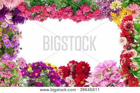 Fantastic Flowers Frame