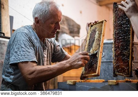 Beekeeper Unseals Honeycomb With A Scraper To Remove Wax And Subtract Honey.
