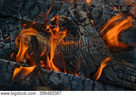 Burning Firewood In The Fireplace Close Up. Firewood Burning On Grill. Texture Fire.