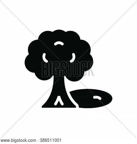 Black Solid Icon For Shade Shadow Coolness Tree Reflection  Umbrage Cast-a-shadow-over
