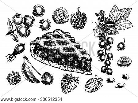 Sketch Isolated Slice Of Berry Pie. Hand Drawn Illustration Home Bake On White Background. Different