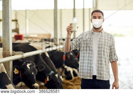 agriculture industry, farming, people and animal husbandry concept - young man or farmer with bottle of cows milk in cowshed on dairy farm wearing medical mask for protection from virus disease