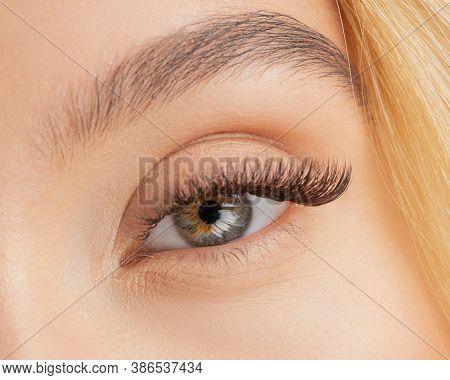 Eyelash Extension Procedure. Beautiful Female Eyes With Long Lashes Closeup
