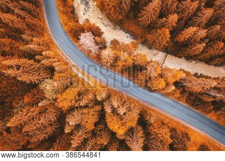 Aerial View Of Road In Beautiful Orange Forest At Sunset In Autumn. Colorful Landscape With Roadway,
