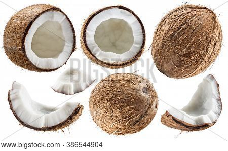 Set of different coconuts with cracked coconut fruit piece isolated on white background.