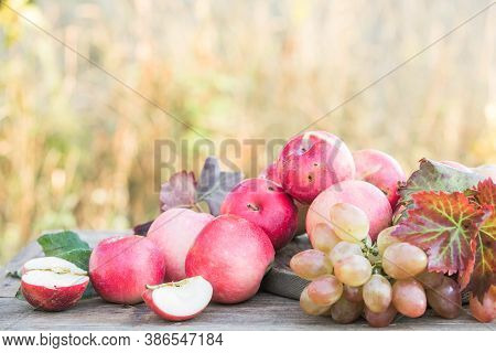 Healthy Organic Apples, Grapes On Wooden Table In The Garden. Apple Harvest. A Wicker Straw Basket W