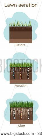 Lawn Care - Aeration And Scarification. Labels By Stage-before, During, And After. Intake Of Substan