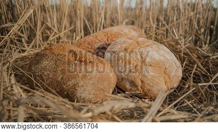 Loaves Of Different Types Of Bread In Wheat Field. Homemade Baking Concept. Wheat Bread On Hay And S