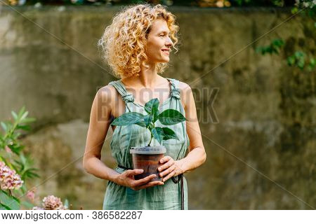 Blond Woman Gardnerer In Mint Overalls Holding Hydrangea Plant It Pot. Gardening, Hobby, Leisure Con