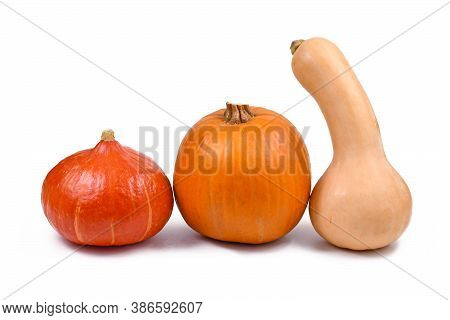 Varation Of Different Types Of Squash Vegetables With Butternut Squash, Hokkaido Squash And Pie Pump