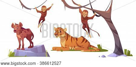 Cartoon Wild Animals Tiger, Monleys And Hyena, Jungle Inhabitants Predators And Herbivorous In Zoo P